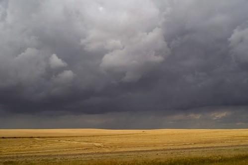 Prairie storm (v. 2.0)