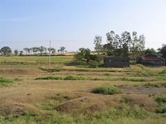 Pastoral 1 (GreyArea) Tags: chalukya train country