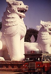 burma mandalay lions bus
