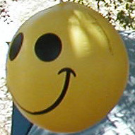 Camp Happy Face Mascot