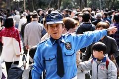 Hanami - Ueno-koen (manganite) Tags: park people men film japan asian japanese tokyo asia minolta ueno tl candid  nippon   nihon hanami kanto uenokoen  7000 april12006 manganite date:year=2006 date:month=april date:day=1