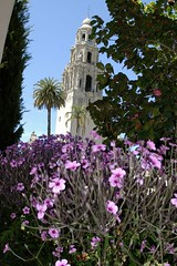 Balboa Park (cwgoodroe) Tags: california park vacation favorite holiday flower water fountain pool animals architecture relax reflecting san sandiego weekend relaxing july diego fisheye sd balboa 31 balboapark sandeigo sfchronicle96hrs july312007 31july2007 50favorite