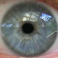 squaredcircle_eye (nospuds) Tags: squaredcircle eye pupil squaredcircleconcentric squaredcircleicon