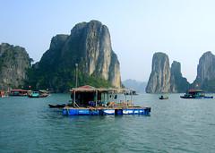 Vietnam hotspot van 2007 ?