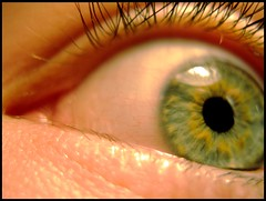 Eye of the * (Simon Grossi) Tags: blue deleteme5 iris deleteme8 deleteme macro deleteme2 deleteme3 deleteme4 green eye deleteme9 deleteme7 eyes deleteme10 vert oeil yeux bleu most vision pupille myosis contracte
