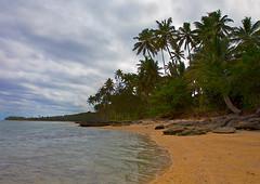 Coral Coast, Fiji... (Goldmanoz) Tags: ocean trees sky beach tag3 taggedout fiji clouds sand rocks tag2 tag1 palm