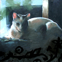 Pooli, a friend's cat (HagitSha) Tags: cats art colors cat portraits paintings kitty kitties vic top20catpix  oilpainting