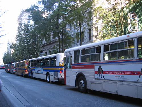 Vancouver Translink Photos - Buses lined up northbound on Granville