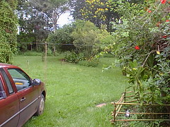 PIC00020 (joaobambu) Tags: 1999 february fazenda farm familia brasil brazil echapor echapora