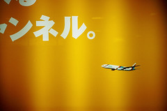 plane poster (lomokev) Tags: yellow topv111 japan plane airplane lomo lca lomography graphics text lomolca top20lomo lomograph needfullrez onlomohome submittedtojpg rota:type=showall rota:type=stilllife file:name=cd3637 posted:to=tumblr