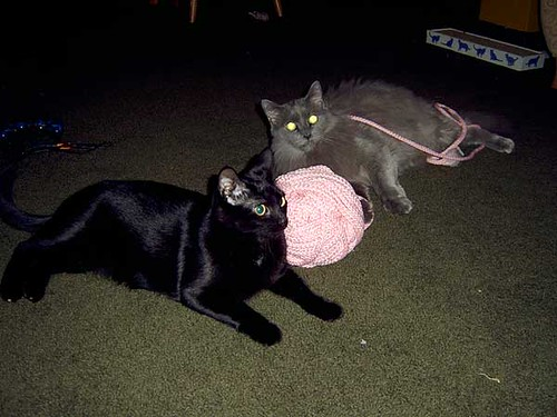 clem & isaac and the giant ball of pink cord