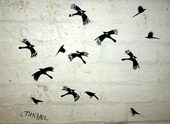 The Birds in the Tunnel