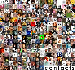 flickr contacts - January 9, 2005 {notes}