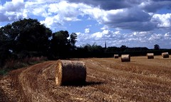 harvest time at Ticknall (Robbo'sRamblings) Tags: derbyshire landscapes