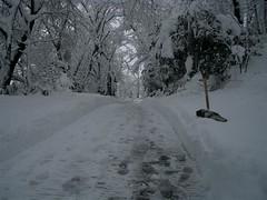 snow 050112-3