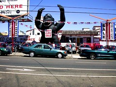 Used Car Gorilla