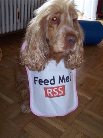 RSS Dog