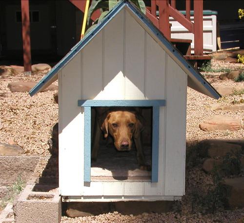 Small houses make wonderful homes
