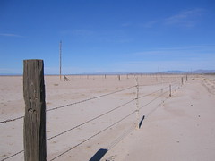 Looking east (finn) Tags: fencepost desert barbedwire