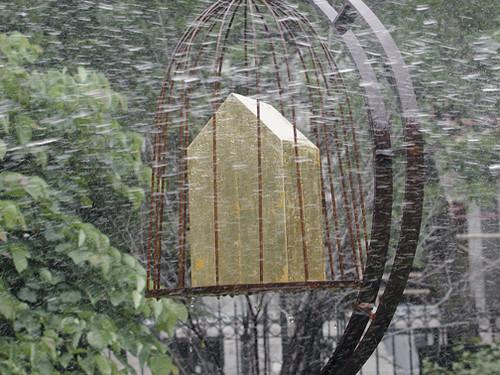Birdhouse Rain