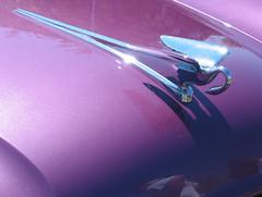 Purple swan ornament - by sonyaseattle