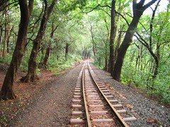 Some journeys go on for ever.... (Chendur) Tags: matheran india track rail chendur explore chendurphotography chendurvenkatraman chendurvenkatramanphotography chendurvenkataramanphotography