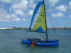 Will with WindRider (joe.oconnell) Tags: sailing sailboat aruba windrider