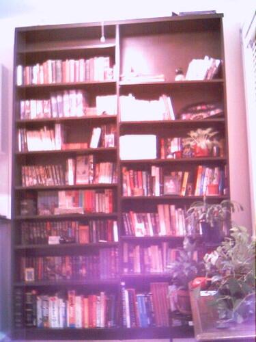 Behold--Shelves!