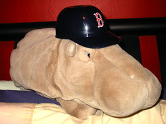 """Leonard """"The Beat"""" Hippopotamus is rooting for the Sox"""
