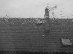 Crying window #1