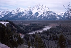 Snake River Overlook, Grand Teton National Park, Moose, Wyoming, U.S.A. (Snuffy) Tags: usa moose wyoming nationalparks grandteton breathtaking grandtetonnationalpark straightfromcamera instantfave neverbeenthere wowiekazowie naturewatcher worldtrekker qualitypixels