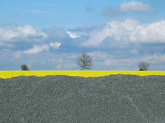 gravel (johanna) Tags: yellow roadside 4l bankholiday rainclouds greatbritishcountryside notlondon