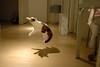 DSC_4986 (junku) Tags: cats topv111 cat fun jump jumping nikon kitten d70 interestingness1 kitties topv9999 猫 ねこ ネコ fuwari sigma24mmf18exaspdgmacro airbornecat airbornecats そらとぶねこ