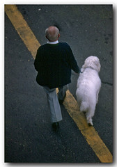 Passeando na linha amarela (Z Lobato) Tags: people gente zlobato zrobertolobato