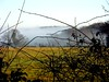 Mist through a sharp hedge (algo) Tags: landscape photography countryside view chilterns hedge