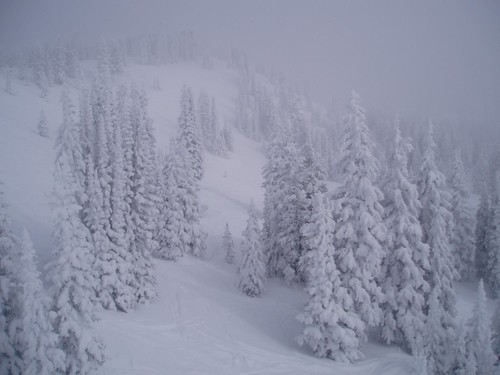 Blizzard - Steamboat Springs,  Colorado
