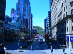 Wide shot of McGill College Avenue (zalgon) Tags: montreal canada mcgill mcgillcollege spring flowers flower extravaganza bustling summer zalgon