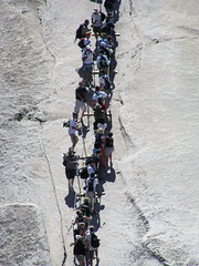 Half Dome Cable Ladder