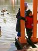 duck poles (Rochelle Ratner) Tags: gatesmemory gates centralpark orange newyork