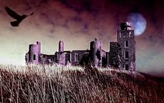 Castle Dracula - by Mαciomhαir