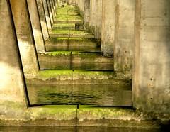 ~ para Juca ~ (Abra K.) Tags: world life look aqua poetry poem poesia juca deniselevertov bridgepier