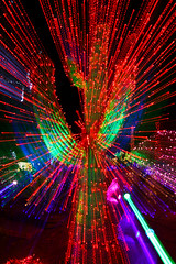 "Extreme Lighting (James Marvin Phelps) Tags: cactusgarden ethelmchocolates jamesmarvinphelpsphotography christmaslights"" christmas"" henderson nevada photography ""jamesmarvinphelps"