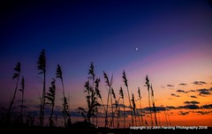 Last Quarter at Duck (T i s d a l e) Tags: tisdale lastquarteratduck twilight dunes seaoats coast beach outerbanks duck fall autumn november 2016 easternnc