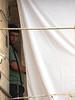 settler peeking