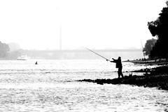 Angler (manganite) Tags: bridge people bw men silhouette digital river germany geotagged interestingness fishing nikon europe bonn ship tl explore highkey d200 nikkor dslr rhine angler northrhinewestphalia interestingness284 i500 18200mmf3556 utatafeature manganite nikonstunninggallery challengeyou challengeyouwinner geo:lat=5077085710832594 geo:lon=7062568693742529 aplusphoto date:year=2006 date:month=october date:day=15