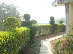 Mahavihara gardens 1