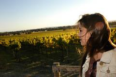 Northern California (CraigClement) Tags: california county woman beautiful northerncalifornia sonoma vineyards lensflare grapes serena