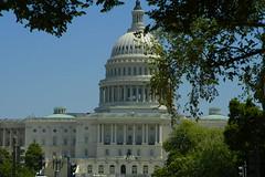 U.S. Capitol 0035