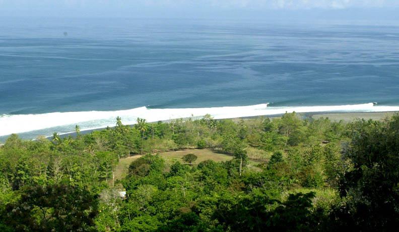 photo de surf 2479