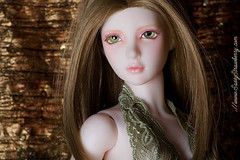 2 (Sassy Strawberry) Tags: doll dolls serenity bjd dollfie superdollfie volks abjd dollfies halfelf limhwa sassystrawberry evildolly